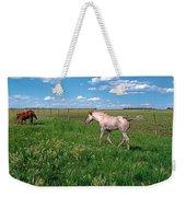Summer Colt Weekender Tote Bag