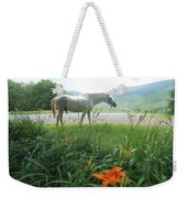 Summer Day Memories With The Paso Fino Stallion Weekender Tote Bag by Patricia Keller