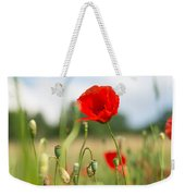 Summer Meadow With Red Poppy Weekender Tote Bag