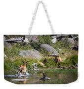 Summer Morning Dip - Elk In Yellowstone National Park - Wyoming Weekender Tote Bag