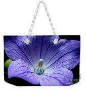 Floral Summer Sensation  Weekender Tote Bag