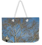 Summer Sky Winter Day Weekender Tote Bag