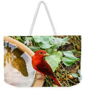 Summer Tanager Weekender Tote Bag