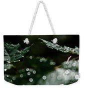Sun After The Rain Weekender Tote Bag
