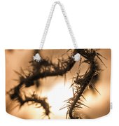 Sun And Frost Weekender Tote Bag