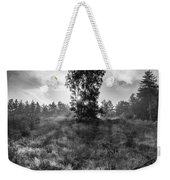 Sun Behind The Tree Weekender Tote Bag