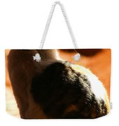Sun Cat Weekender Tote Bag