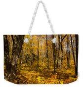 Sun Dappled Autumn Forest  Weekender Tote Bag