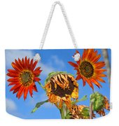 Sun Drenched In Autumn By Diana Sainz Weekender Tote Bag