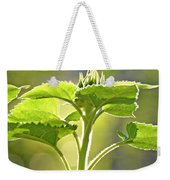 Sun Drenched Sunflower With Bible Verse Weekender Tote Bag
