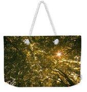 Sun In The Trees Weekender Tote Bag