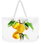 Sun Kissed Apricots Weekender Tote Bag