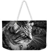 Sun Kissed Kitty Weekender Tote Bag