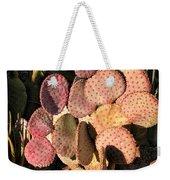 Sun On Cactus Weekender Tote Bag