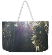Sun Penetrates The Redwood Forest Weekender Tote Bag
