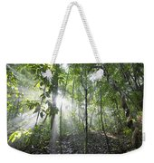 Sun Shining In Tropical Rainforest Weekender Tote Bag