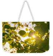 Sun Shining Through Leaves Weekender Tote Bag