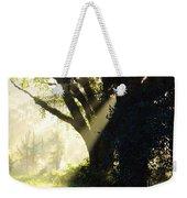 Sunbeam Tree Weekender Tote Bag
