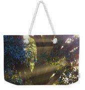 Sunbeams In The Tree Weekender Tote Bag