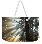 Sunbeams Through Trees Weekender Tote Bag