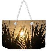 Sundown Through The Grass Weekender Tote Bag