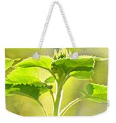 Sundrenched Sunflower - Digital Paint Weekender Tote Bag