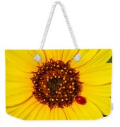 Sunflower And Ladybird Beetle 2am-110490 Weekender Tote Bag