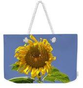 Sunflower At Latrun Weekender Tote Bag