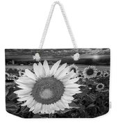Sunflower Field Forever Bw Weekender Tote Bag