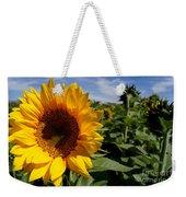 Sunflower Glow Weekender Tote Bag by Kerri Mortenson