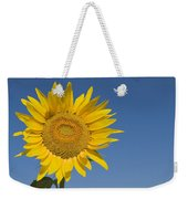 Sunflower, Helianthus Annuus Weekender Tote Bag
