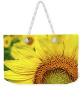 Sunflower In Field Weekender Tote Bag by Elena Elisseeva