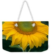 Sunflower In Seattle Weekender Tote Bag