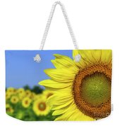Sunflower In Sunflower Field Weekender Tote Bag by Elena Elisseeva