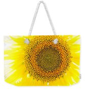 Sunflower In The Summer Sun Weekender Tote Bag