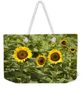 Sunflower Patch Weekender Tote Bag by Bill Cannon