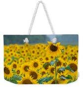 Sunflower Rain Sussex Nj Weekender Tote Bag