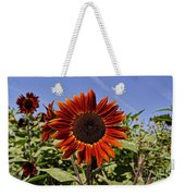 Sunflower Sky Weekender Tote Bag by Kerri Mortenson