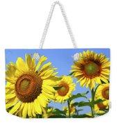 Sunflowers In Field Weekender Tote Bag