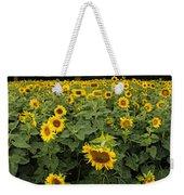 Sunflowers Panorama Weekender Tote Bag