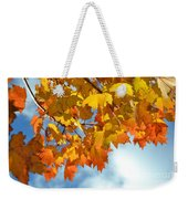 Sunlight And Shadow - Autumn Leaves Two Weekender Tote Bag