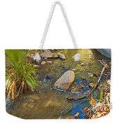 Sunlight On Andreas Creek In Indian Canyons-ca Weekender Tote Bag