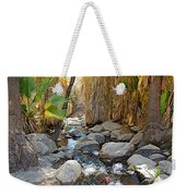 Sunlight Over Rocky Andreas Creek In Indian Canyons-ca Weekender Tote Bag