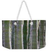 Sunlight Through Cacti Weekender Tote Bag