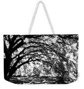 Sunlight Through Spanish Oak Tree - Black And White Weekender Tote Bag