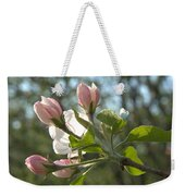 Sunlit Apple Blossoms Weekender Tote Bag