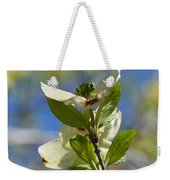 Sunlit Dogwood Blossoms Weekender Tote Bag