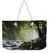 Sunlit Dream Weekender Tote Bag