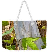 Sunlit Sycamore Leaves In Andreas Canyon In Indian Canyons-ca Weekender Tote Bag