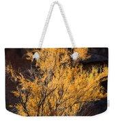 Sunlit Tree In Palo Duro Canyon 110213.06 Weekender Tote Bag